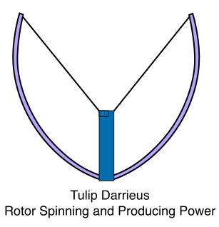 Tulip Darrieus, Rotor Spinning and Producing Power