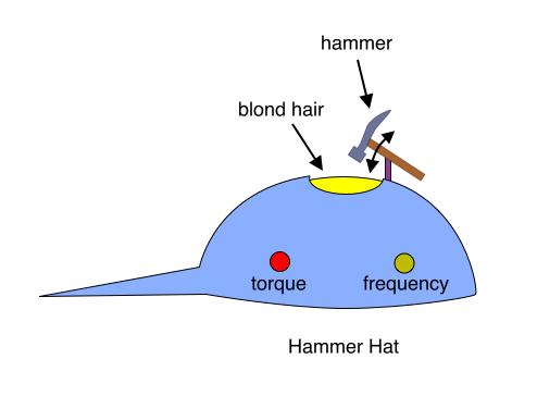 Hammer Hat